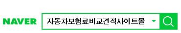 네이버검색